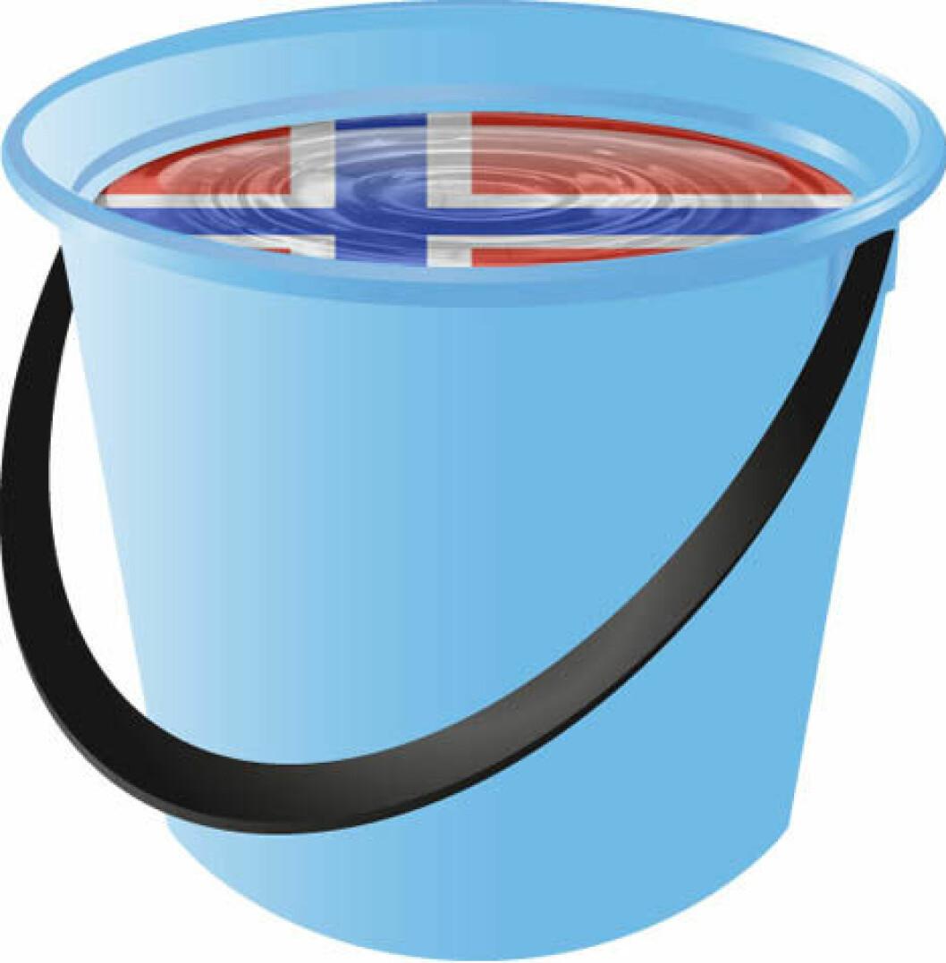 Vaskebøtte norsk flagg colourbox