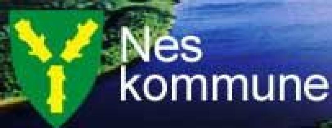 nes-kommune.jpg
