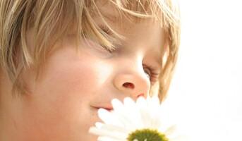 Svanemerket renhold for barnehager