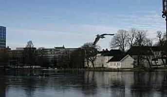 Stavanger fylles opp