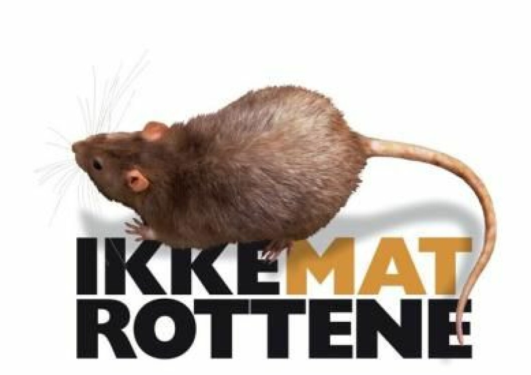 Ikke mat rottene