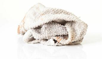 Skift håndklær etter tredje gangs bruk!
