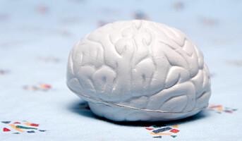 Vær snill mot hjernen på jobben