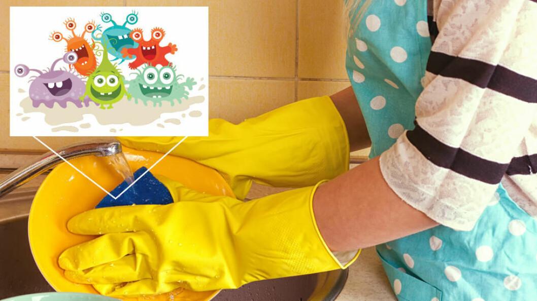 At det finnes mye «snadder» i kjøkkenvasker og oppvasksvamper er ikke så uventet, men noen av de andre stedene vil kanskje overraske. (Ill.foto: Colourbox)