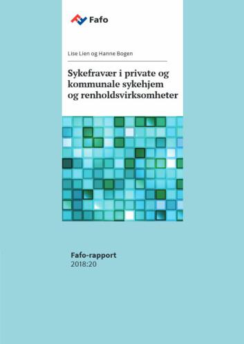 Fafos rapport har fyldig omtale av renholdsvirksomhetene.