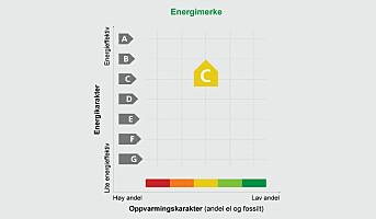 Neste år går 6000 energimerker ut på dato