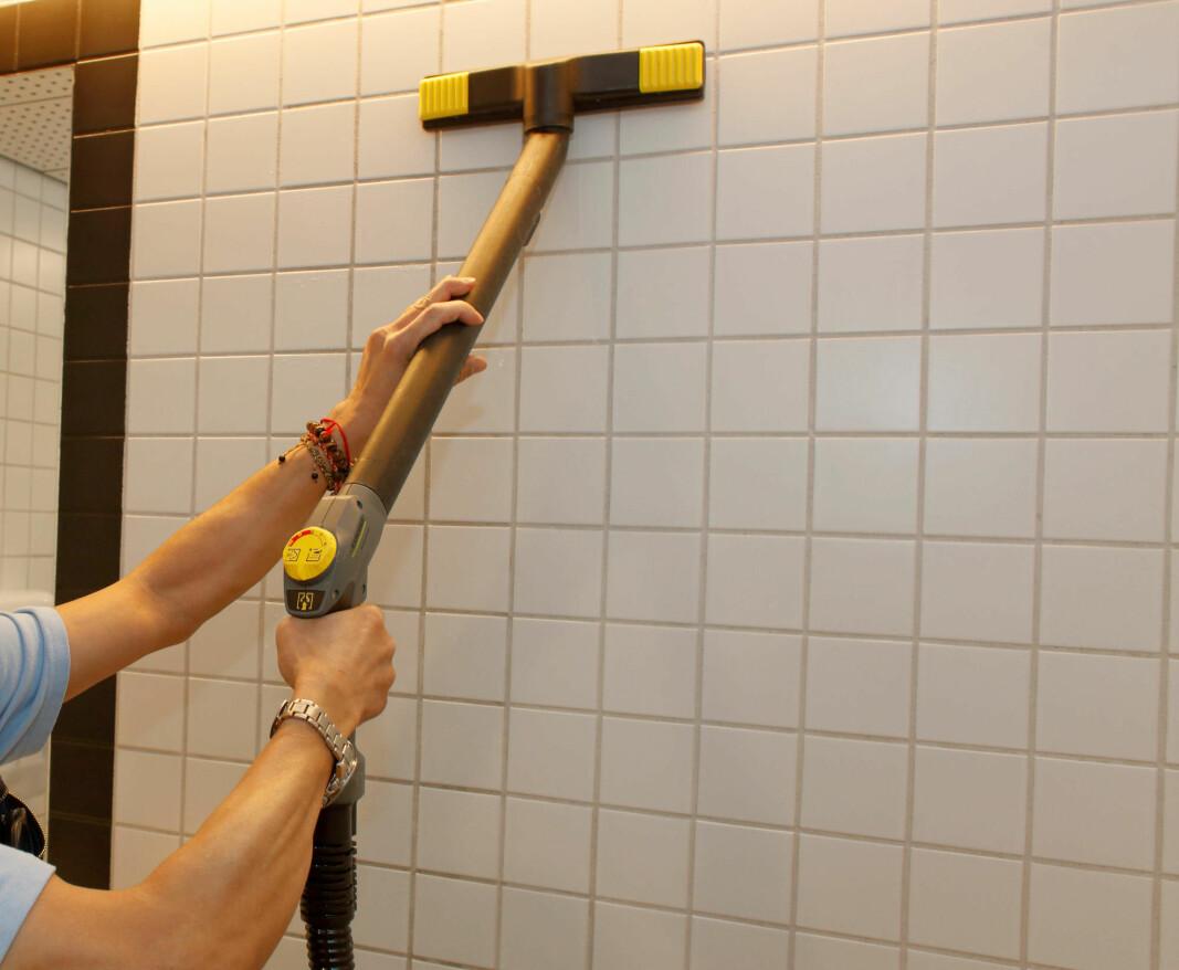 Damprens er én metode som kan redusere grobunnen for og fjerne mikroorganismer.