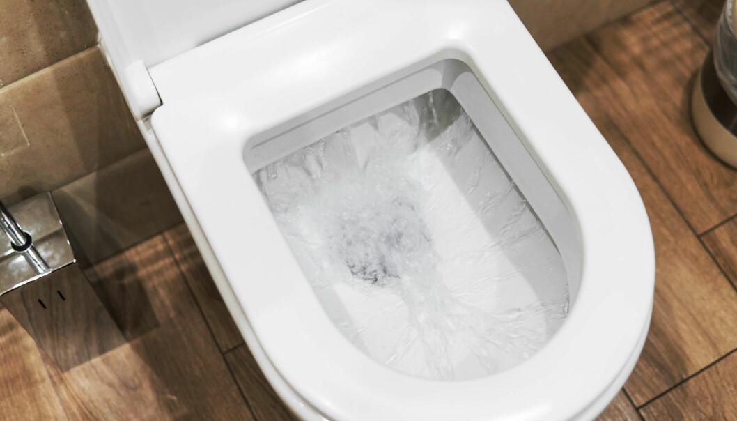 Det bør ideelt sett skylles ned daglig i toaletter og urinaler.
